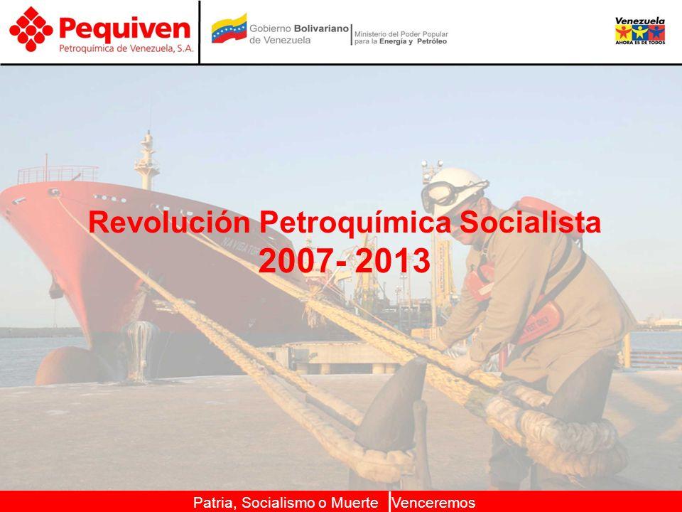 Revolución Petroquímica Socialista 2007- 2013