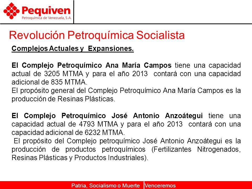 Revolución Petroquímica Socialista