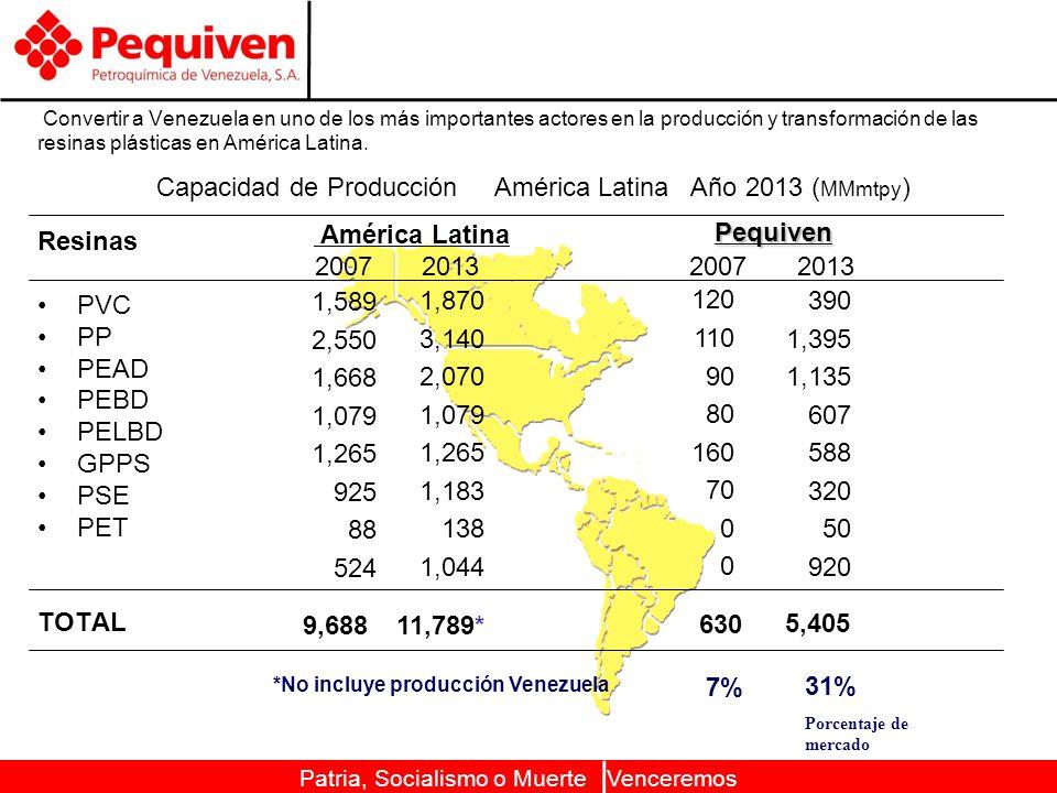 Capacidad de Producción América Latina Año 2013 (MMmtpy)