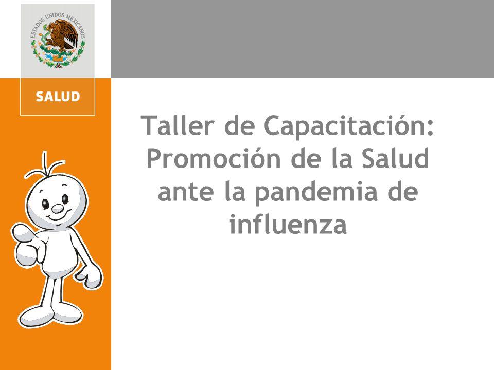 Taller de Capacitación: Promoción de la Salud ante la pandemia de influenza