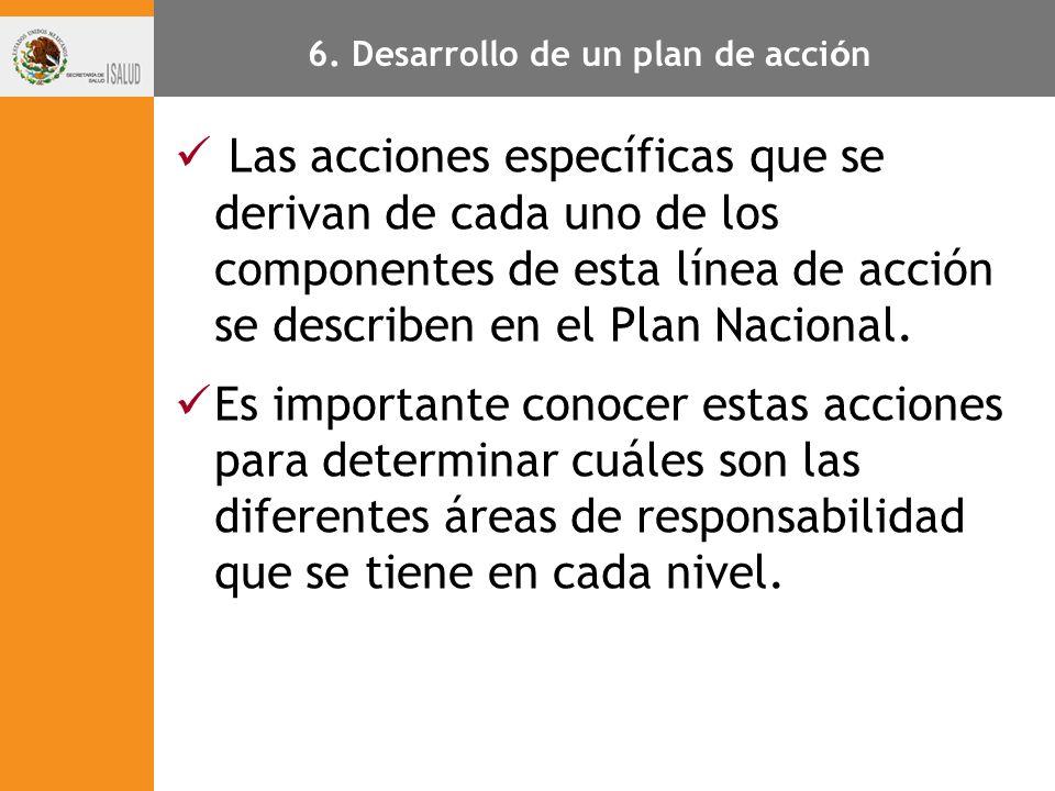 6. Desarrollo de un plan de acción