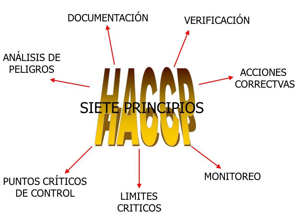 HACCP SIETE PRINCIPIOS DOCUMENTACIÓN VERIFICACIÓN ANÁLISIS DE PELIGROS