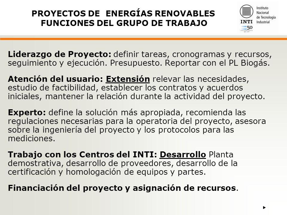 PROYECTOS DE ENERGÍAS RENOVABLES FUNCIONES DEL GRUPO DE TRABAJO
