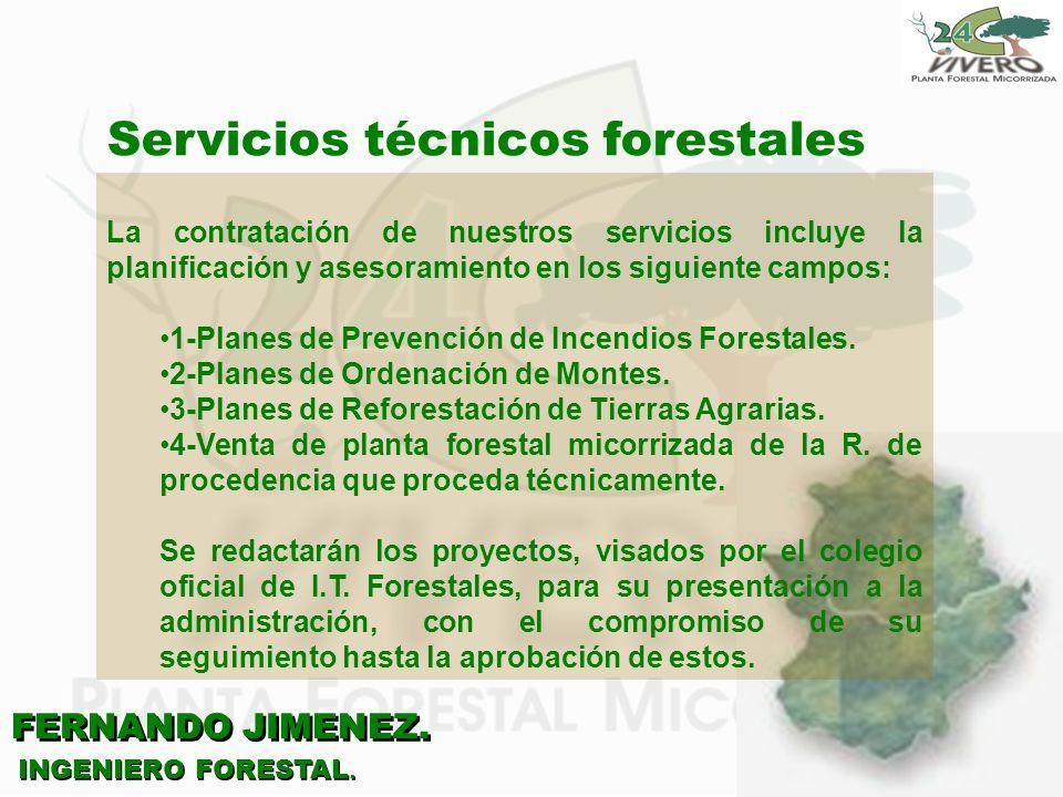 Servicios técnicos forestales