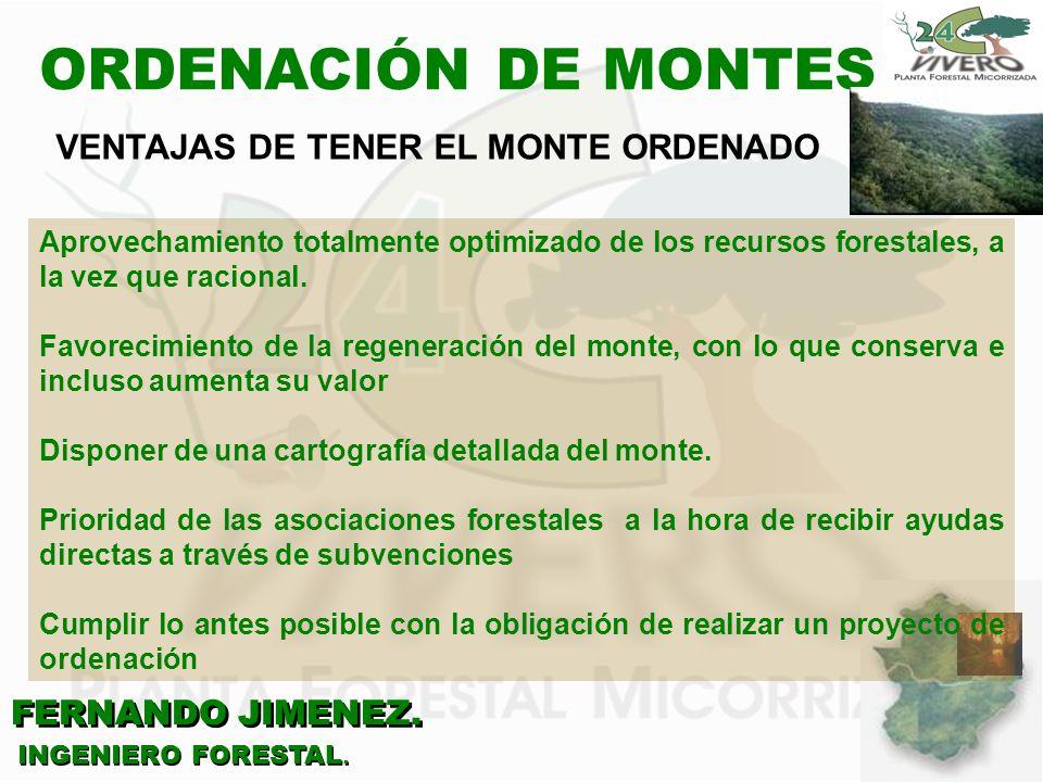 ORDENACIÓN DE MONTES VENTAJAS DE TENER EL MONTE ORDENADO