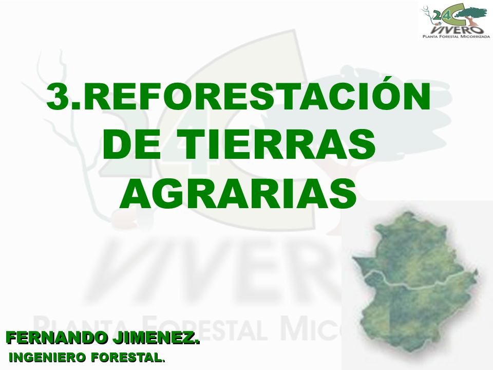 3.REFORESTACIÓN DE TIERRAS AGRARIAS