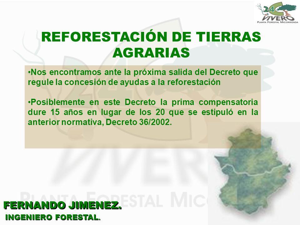 REFORESTACIÓN DE TIERRAS AGRARIAS