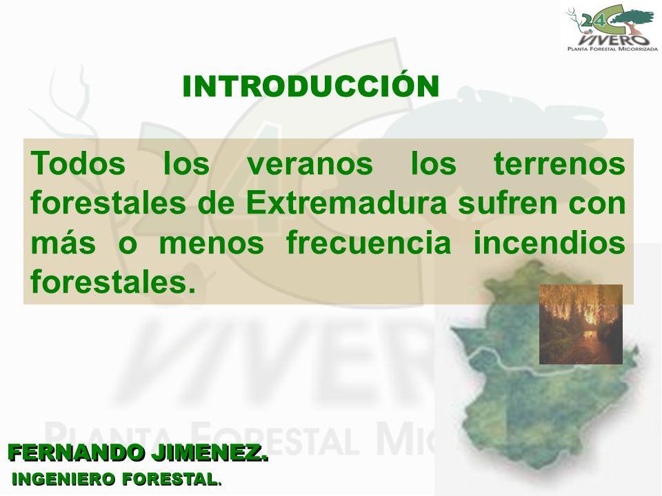 INTRODUCCIÓN Todos los veranos los terrenos forestales de Extremadura sufren con más o menos frecuencia incendios forestales.