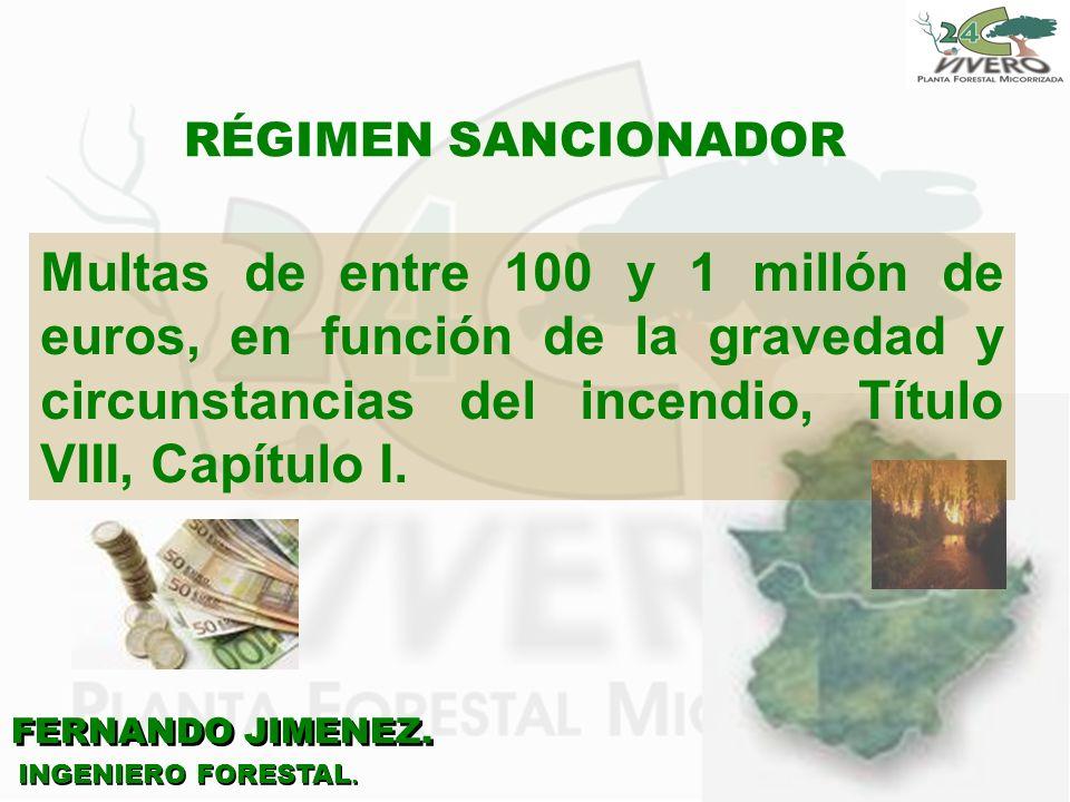 RÉGIMEN SANCIONADOR Multas de entre 100 y 1 millón de euros, en función de la gravedad y circunstancias del incendio, Título VIII, Capítulo I.