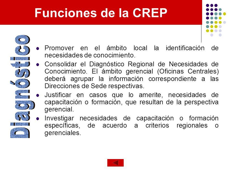 Funciones de la CREP Diagnóstico