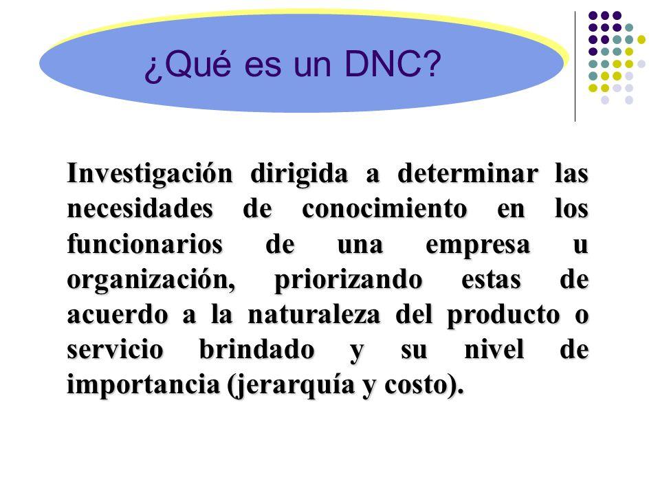 ¿Qué es un DNC