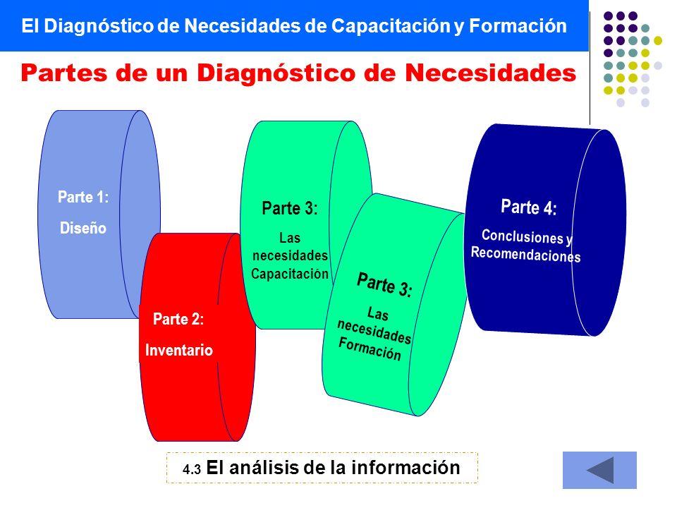 El Diagnóstico de Necesidades de Capacitación y Formación