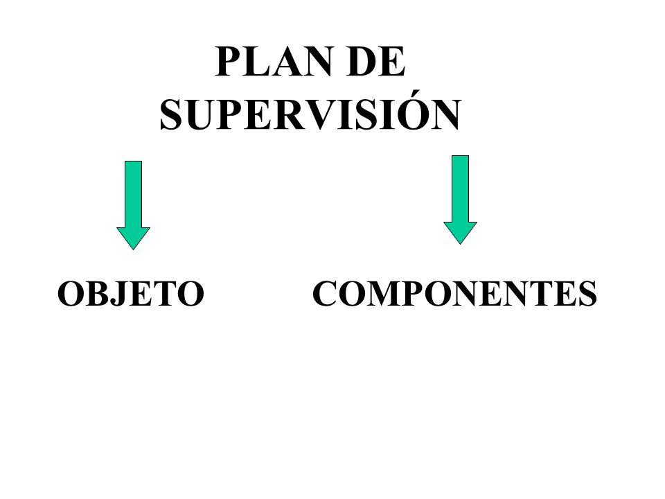PLAN DE SUPERVISIÓN OBJETO COMPONENTES