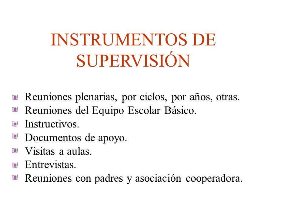 INSTRUMENTOS DE SUPERVISIÓN