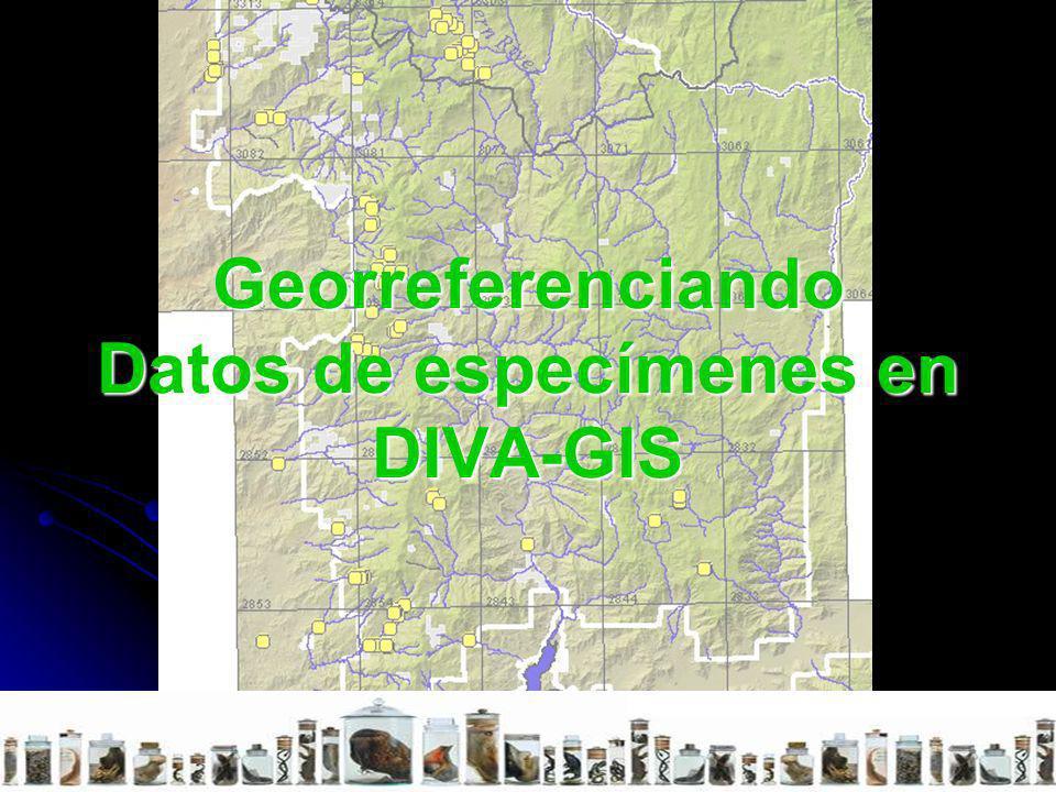 Georreferenciando Datos de especímenes en DIVA-GIS