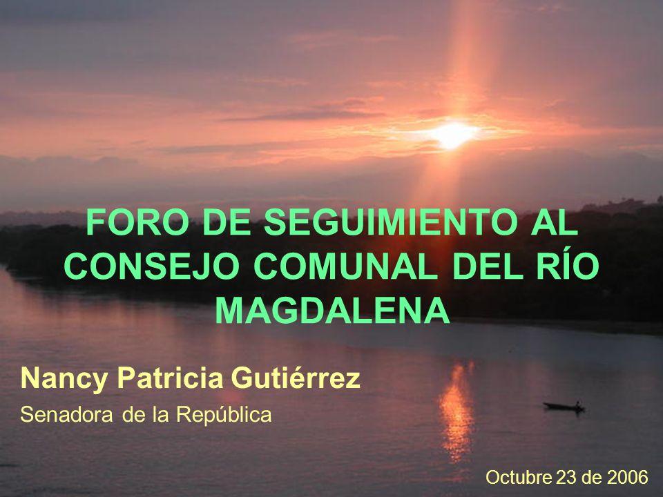 FORO DE SEGUIMIENTO AL CONSEJO COMUNAL DEL RÍO MAGDALENA