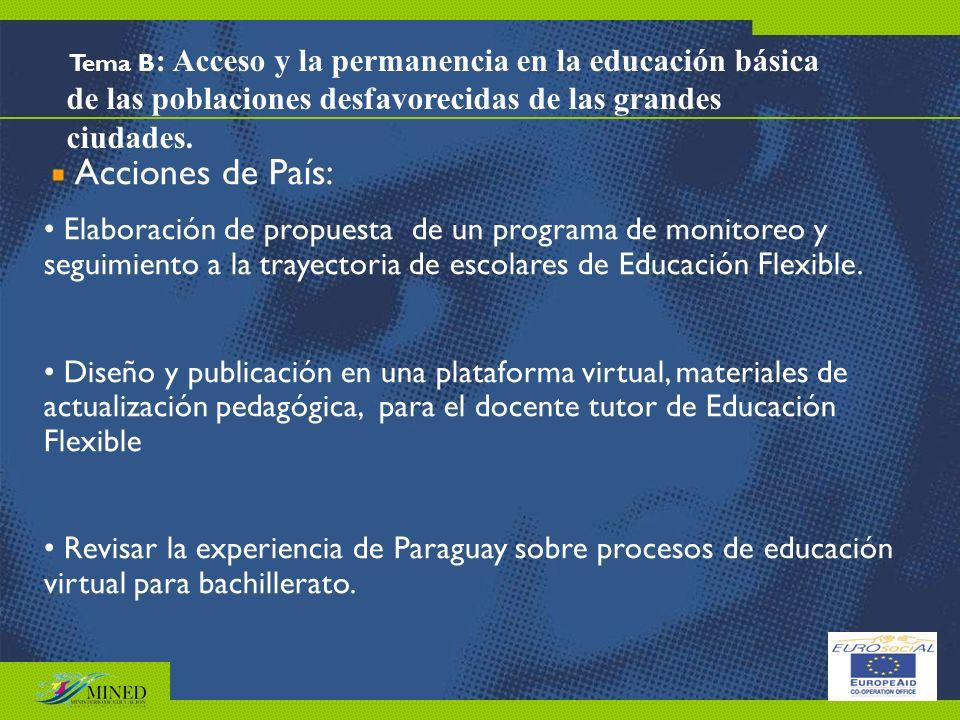 Tema B: Acceso y la permanencia en la educación básica de las poblaciones desfavorecidas de las grandes ciudades.