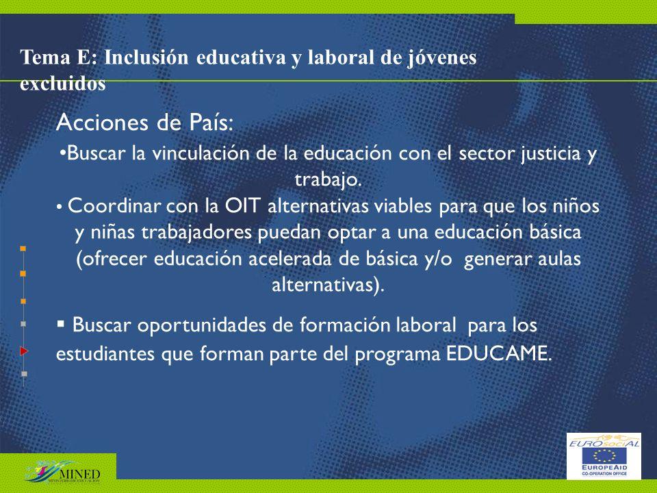 Tema E: Inclusión educativa y laboral de jóvenes excluidos