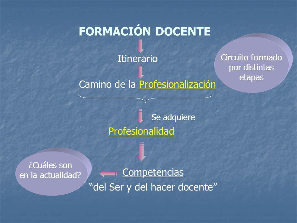 FORMACIÓN DOCENTE Itinerario Camino de la Profesionalización