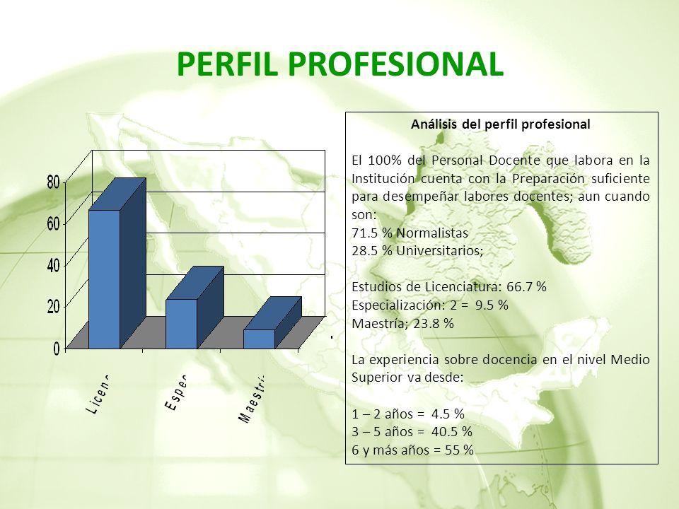 Análisis del perfil profesional
