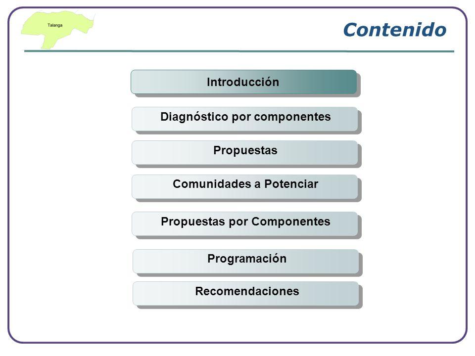 Contenido Introducción Diagnóstico por componentes Propuestas