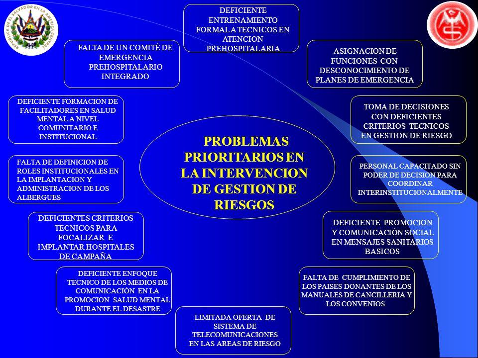PROBLEMAS PRIORITARIOS EN LA INTERVENCION DE GESTION DE RIESGOS