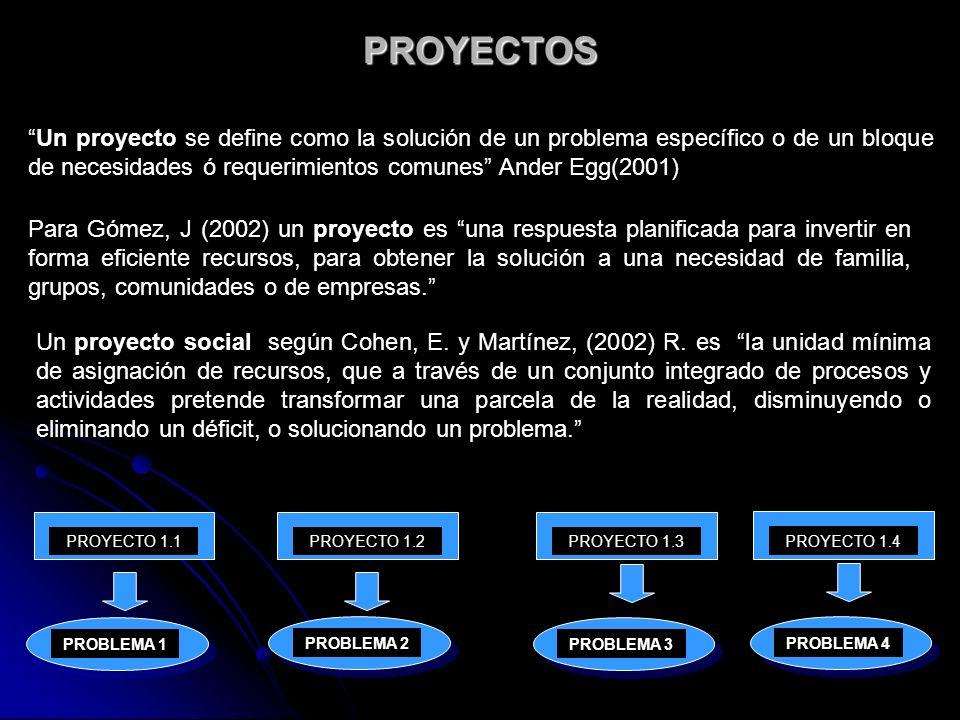 PROYECTOS Un proyecto se define como la solución de un problema específico o de un bloque de necesidades ó requerimientos comunes Ander Egg(2001)