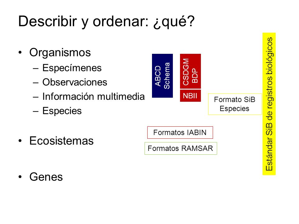 Describir y ordenar: ¿qué