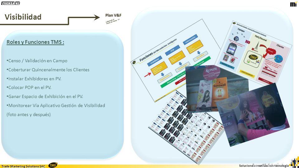 Visibilidad Roles y Funciones TMS : Censo / Validación en Campo