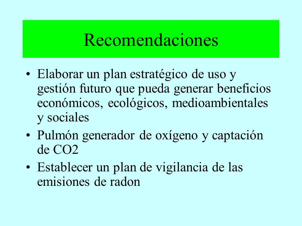 Recomendaciones Elaborar un plan estratégico de uso y gestión futuro que pueda generar beneficios económicos, ecológicos, medioambientales y sociales.