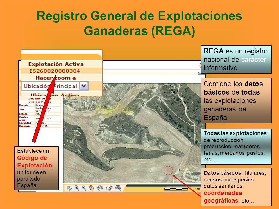 Registro General de Explotaciones Ganaderas (REGA)