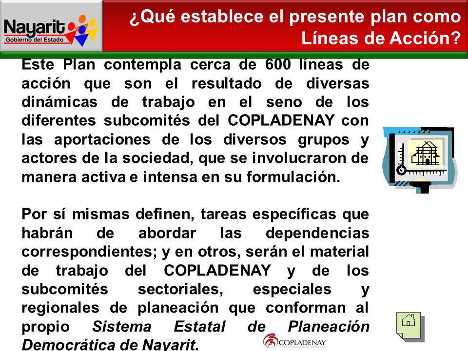 ¿Qué establece el presente plan como Líneas de Acción