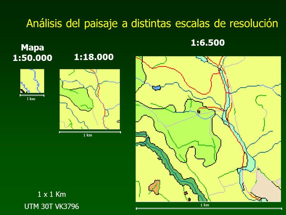 Análisis del paisaje a distintas escalas de resolución