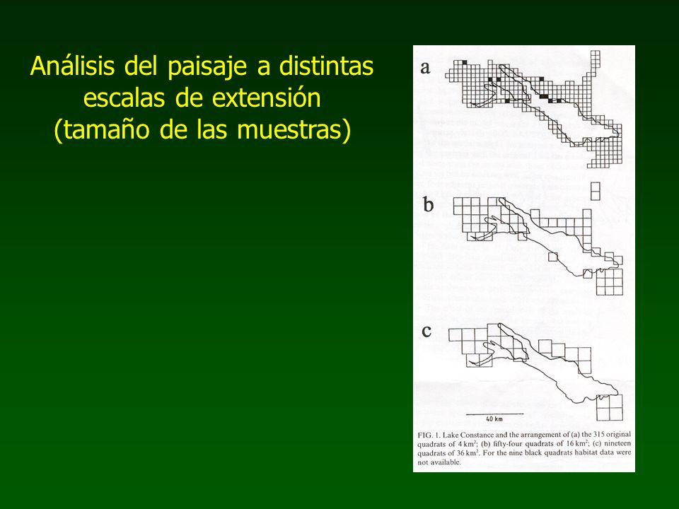 Análisis del paisaje a distintas escalas de extensión