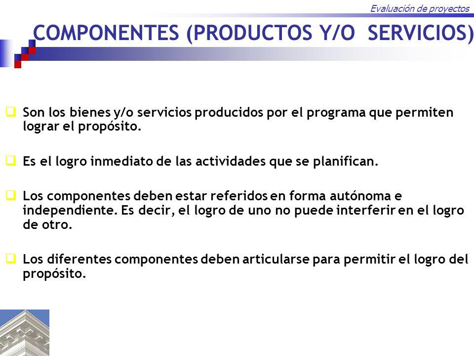 COMPONENTES (PRODUCTOS Y/O SERVICIOS)