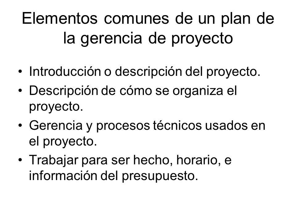 Elementos comunes de un plan de la gerencia de proyecto