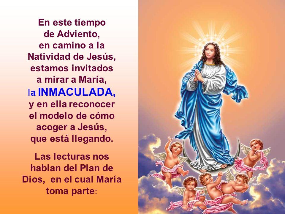 En este tiempo de Adviento, en camino a la Natividad de Jesús,