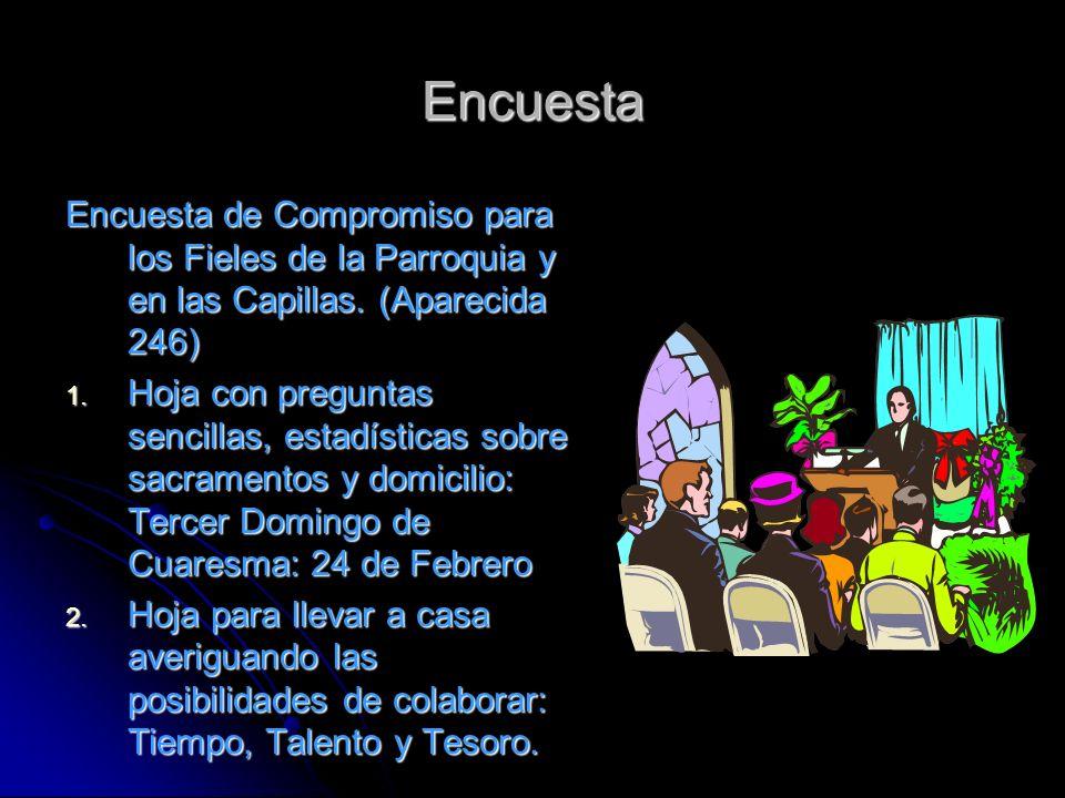 Encuesta Encuesta de Compromiso para los Fieles de la Parroquia y en las Capillas. (Aparecida 246)
