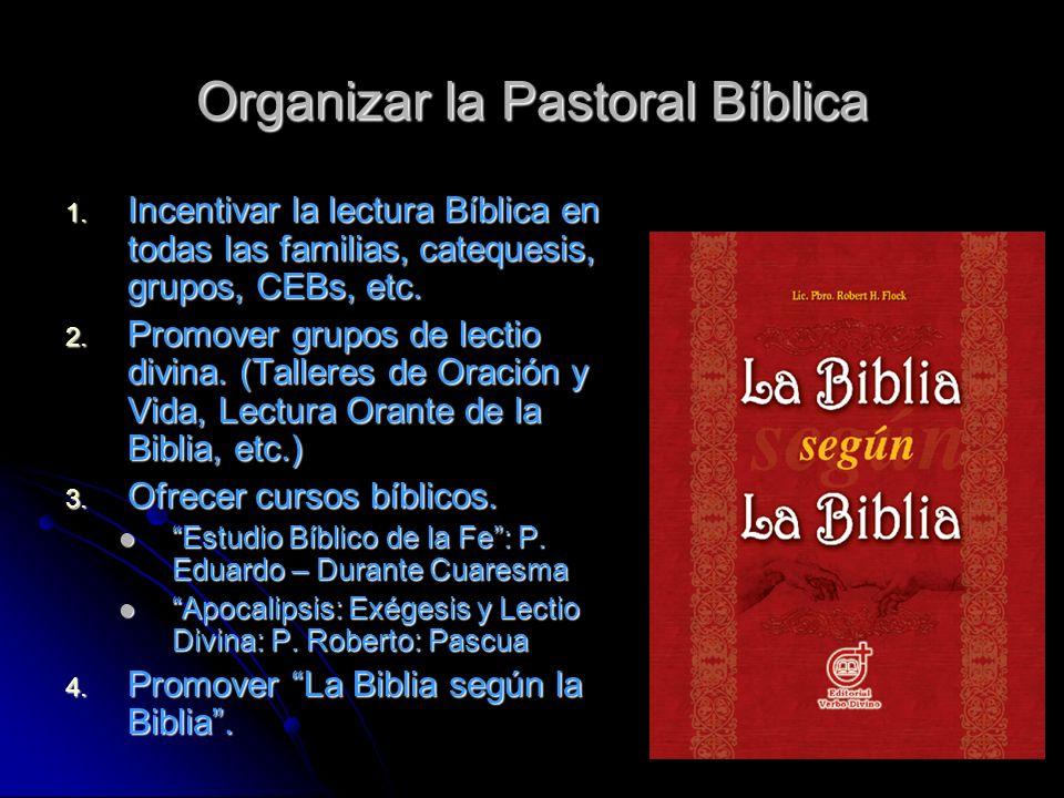 Organizar la Pastoral Bíblica