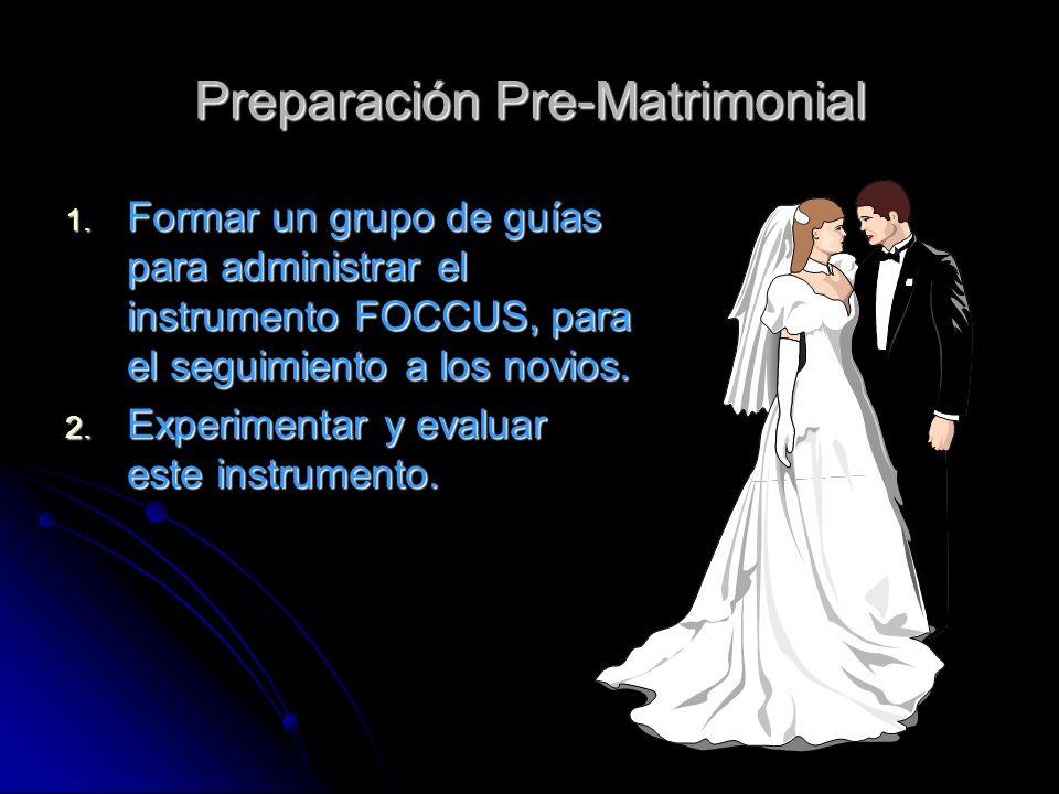 Preparación Pre-Matrimonial