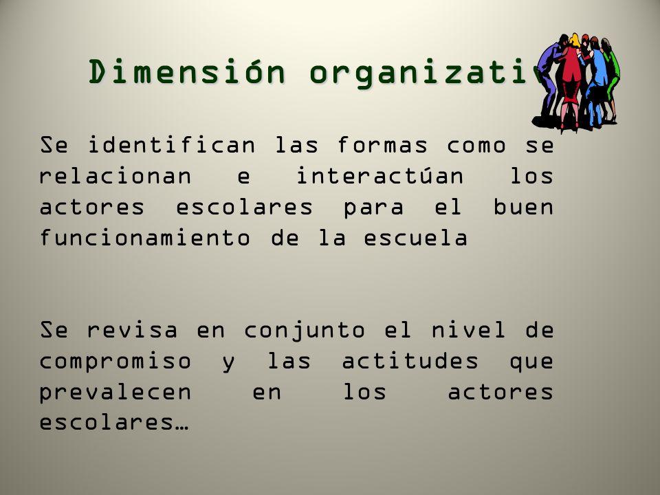 Dimensión organizativa