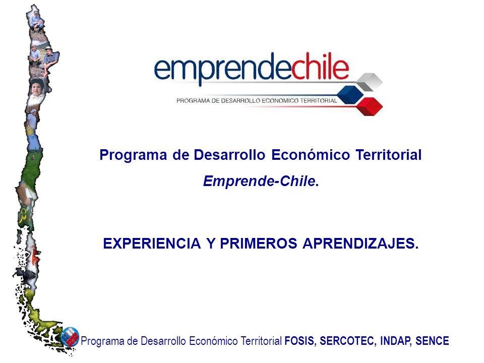 Programa de Desarrollo Económico Territorial Emprende-Chile.