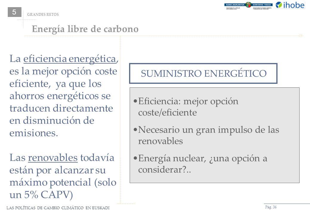 5 GRANDES RETOS. Energía libre de carbono.