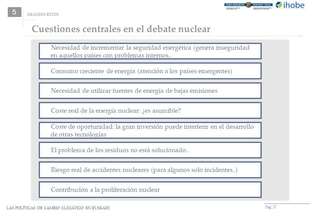 Cuestiones centrales en el debate nuclear