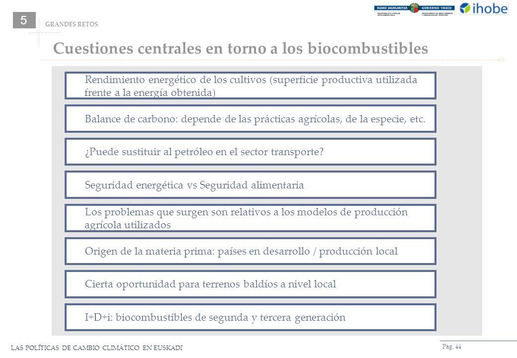 Cuestiones centrales en torno a los biocombustibles