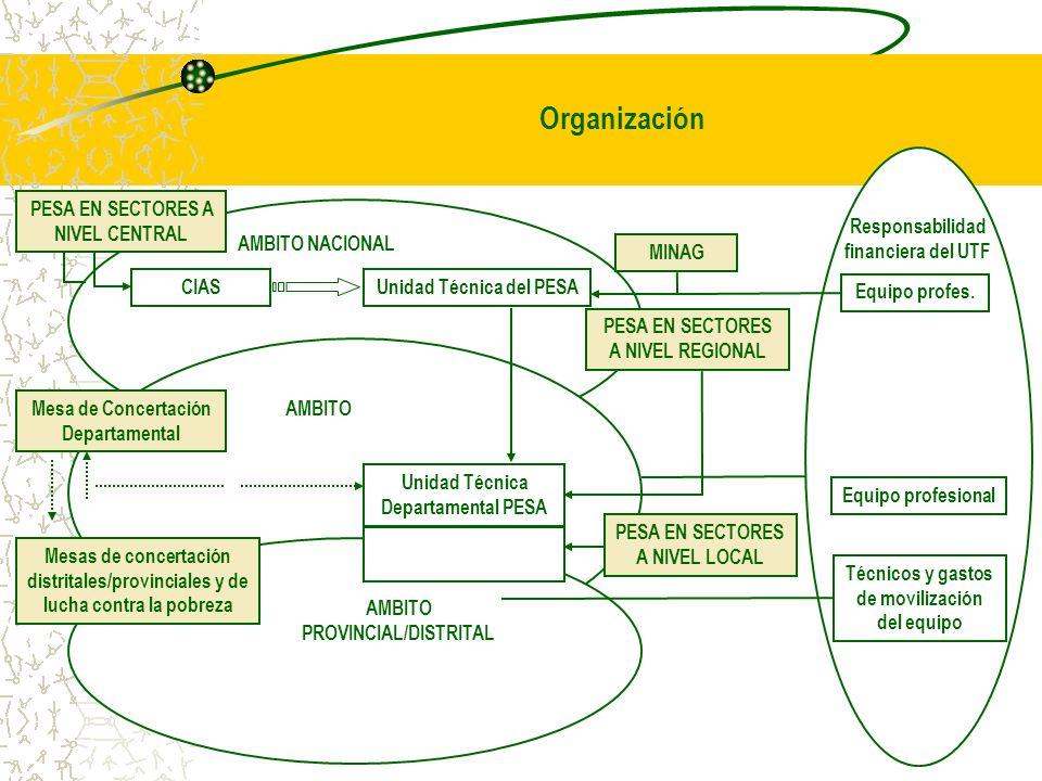 Organización PESA EN SECTORES A NIVEL CENTRAL