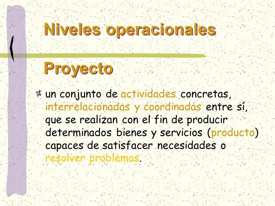 Niveles operacionales Proyecto
