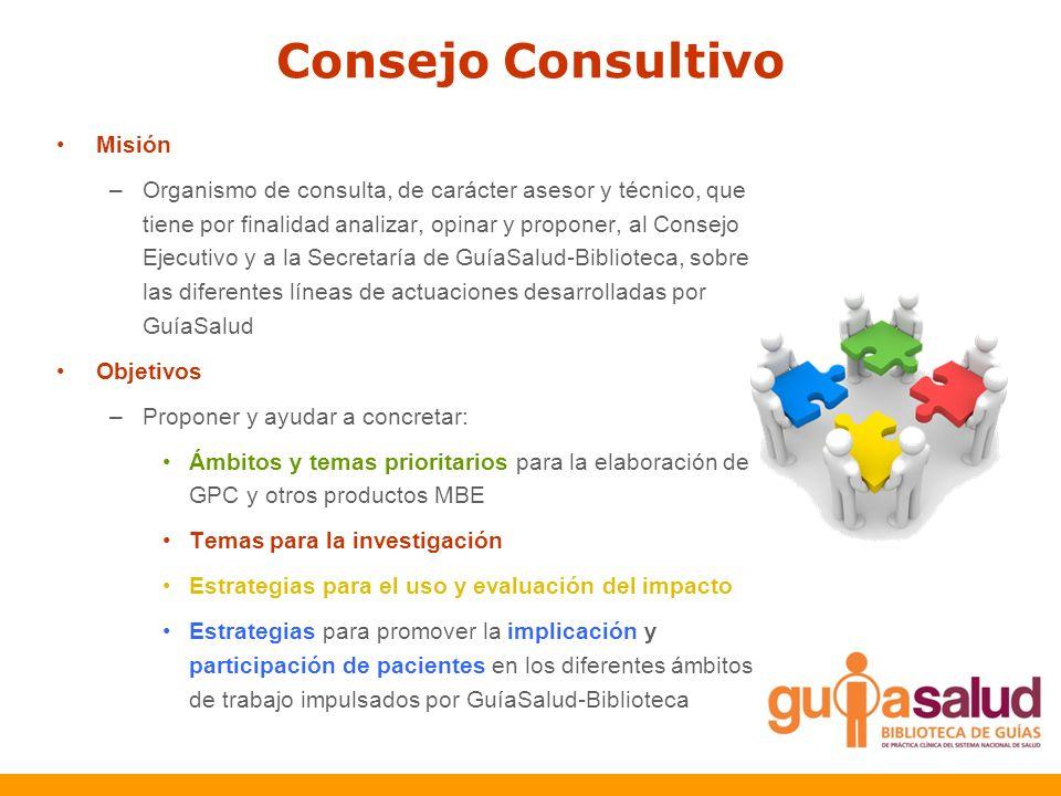 Consejo Consultivo Misión
