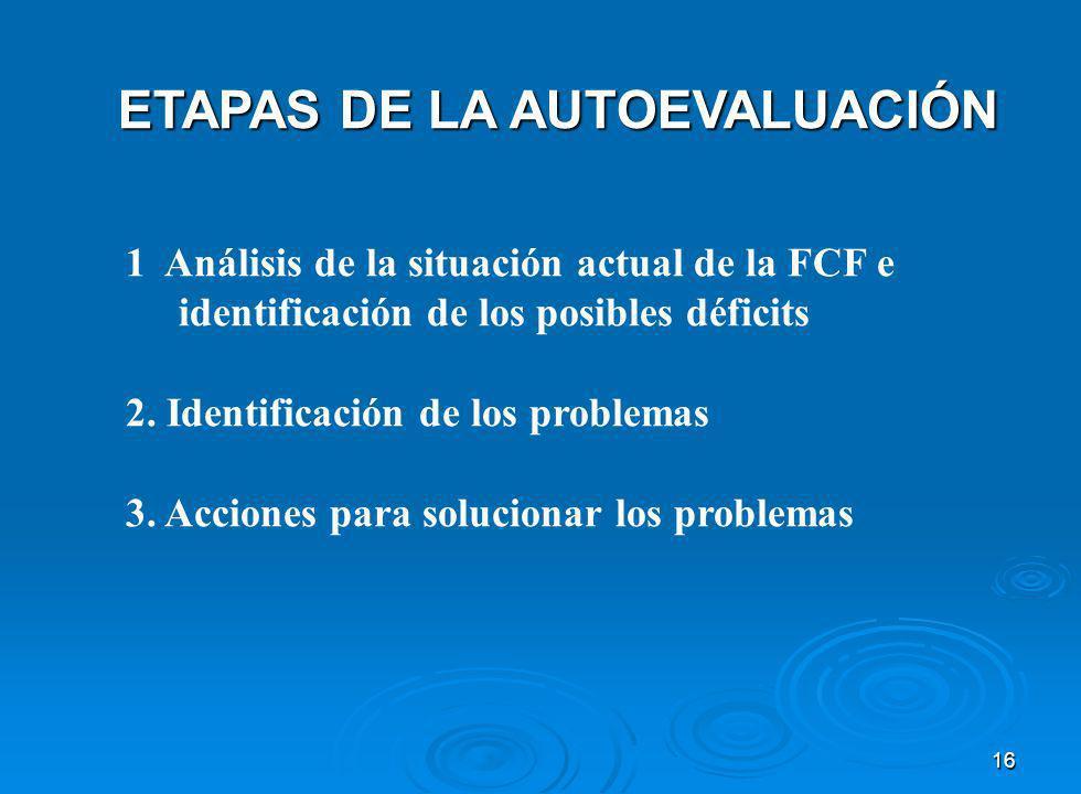 ETAPAS DE LA AUTOEVALUACIÓN