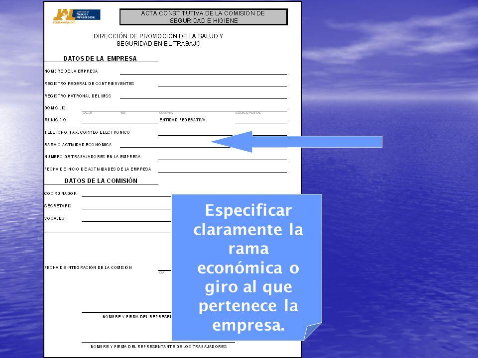 Especificar claramente la rama económica o giro al que pertenece la empresa.